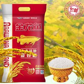 金龙鱼 原香稻大米5kg/袋东北五常米煮饭香软弹滑粳米