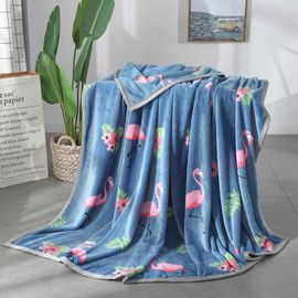 宝瑞祥 冬季毛毯  加厚双人云貂绒毯子  午睡盖毯  尺寸:200*230