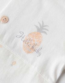 哈衣/爬服/连体服 夏季婴儿半袖衣服宝宝夏装哈衣男女儿童3-18个月连体衣爬服