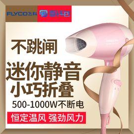 飞科 (FLYCO) 电吹风机家用、宿舍电吹风筒大功率负离子冷热风 专业沙龙发廊商用负离子吹风机