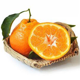 品赞 四川浦江不知火丑柑5斤 丑八怪丑橘