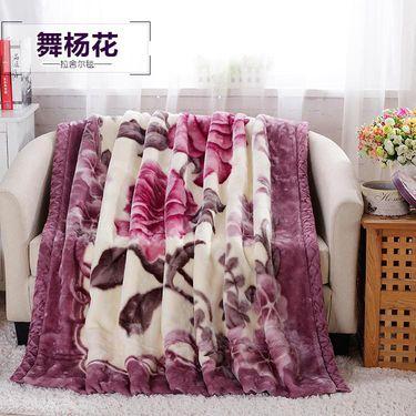 逸轩 /精新 加厚拉舍尔双人毛毯冬季保暖毯子 200*230CM