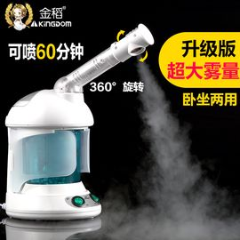 金稻 KINGDOM KD-2328蒸脸器热喷 纳米离子喷雾补水仪香薰蒸脸机 家用美容仪器