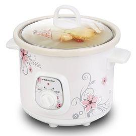 荣事达  2.5L陶瓷炖锅  迷你bb煲隔水电炖盅白瓷煲汤锅煮粥锅粗粮电炖盅 RBC-25M