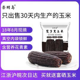崇明岛 新鲜甜糯双子黑玉米8袋16根即食甜玉米面粉渣水果爆米花黏小玉米粒速冻