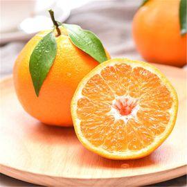 品赞 四川春见耙耙柑9斤 纯甜橘子