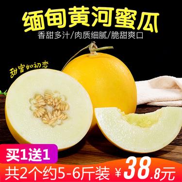 橙市果农 【买1个送1个】缅甸黄河蜜瓜 新鲜当季水果2个装5-8斤黄金哈密瓜香甜瓜