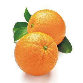 奉节脐橙 重庆奉节脐橙 水果橙子包邮 新鲜柑橘实惠果产地现摘现发 重庆特产橙子 5斤装标准果(含箱)